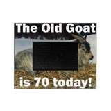 70th birthday Picture Frames