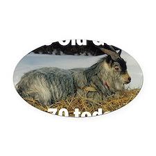 goat70ys Oval Car Magnet