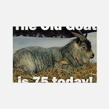 goat75ys Rectangle Magnet
