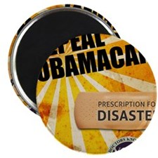 dec_fight_to_repeal Magnet