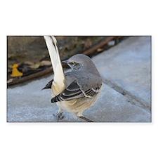 Nature Flips Me the Bird Decal
