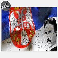 TeslaShirt Puzzle