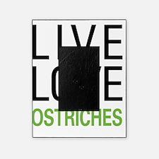 liveostrich Picture Frame
