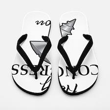 congress Flip Flops