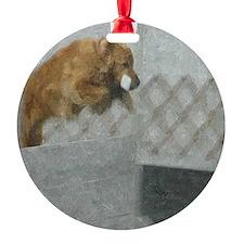 roh square Ornament
