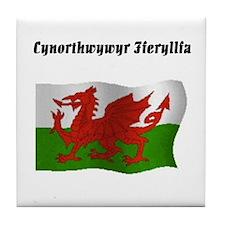 Pharmacy Technician (Wales UK Tile Coaster