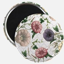 Modern vintage morning glories Magnet