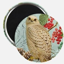 Vintage winter garden white owl Magnet