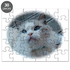 DSC_0971 Puzzle