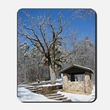 Winter in the Park Mousepad