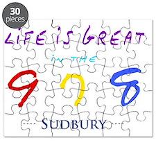 sudbury Puzzle