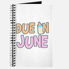 Due In June Girl Journal