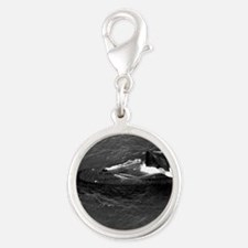 barb framed panel print Silver Round Charm