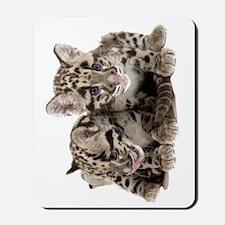 Clouded Leopard Cubs78 Mousepad