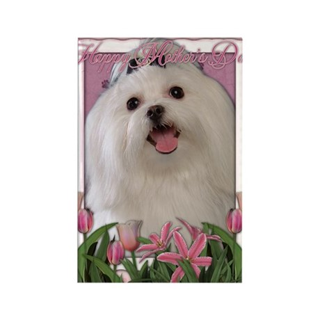Mothers_Day_Pink_Tulips_Maltese Rectangle Magnet