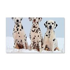 dalmatian for blanket Car Magnet 20 x 12