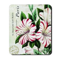 Vintage French Christmas amaryllis Mousepad