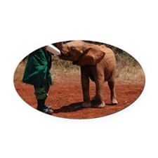 Baby Elephant Oval Car Magnet