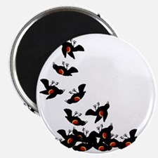 falling-blackbirds Magnet