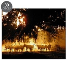 Field Horses signed. Oct. Winner Puzzle