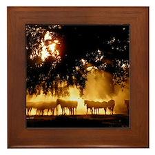 Field Horses signed. Oct. Winner Framed Tile