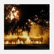 Field Horses signed. Oct. Winner Tile Coaster