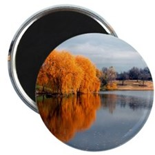 Fall Beauty McConnell Magnet