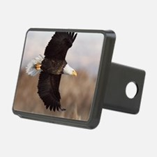 x10  3 Hitch Cover