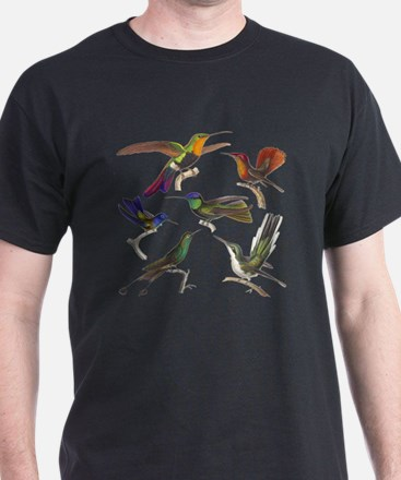 Six Beautiful Hummingbirds T-Shirt