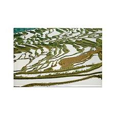 Honghe County. Farmer walks by se Rectangle Magnet