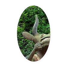 Statue of horned voodoo animist de Oval Car Magnet