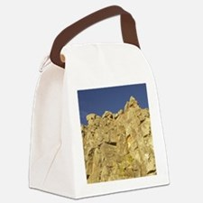 near Dunedin Canvas Lunch Bag