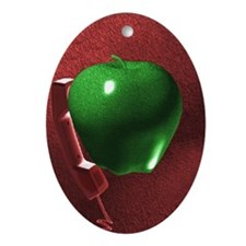 redi3 Oval Ornament