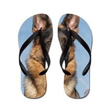 German Shepherd Dog 9Y554D-150 Flip Flops
