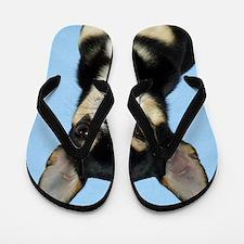 Chihuahua 9W092D-057 Flip Flops