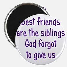 bestfriends3 Magnet