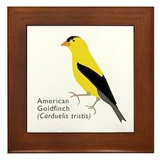 american goldfinch Framed Tile