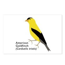 american goldfinch Postcards (Package of 8)