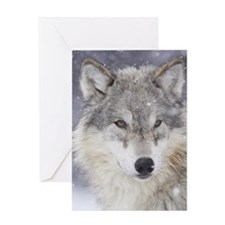 ms  Wolf Greeting Card