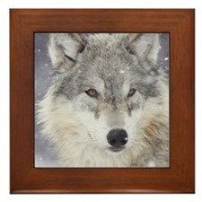 ms  Wolf Framed Tile