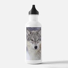 x14  Wolf Water Bottle
