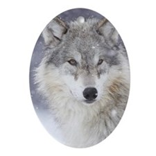 x14  Wolf Oval Ornament