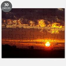 100_1378-June Puzzle