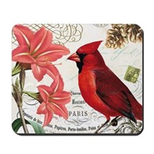 Vintage winter garden amarylis and cardi Mousepad