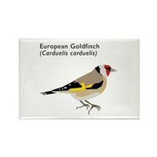european goldfinch Rectangle Magnet
