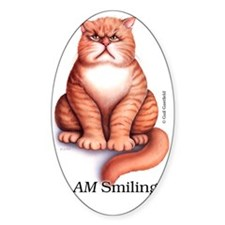Smiling_ iphone2 Decal