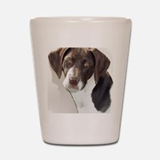 german shorthair pointer portait Shot Glass