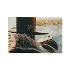 billfish sticker Rectangle Magnet