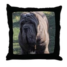 coster Throw Pillow