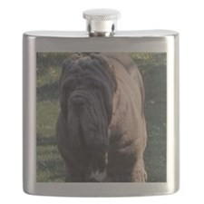 coster Flask